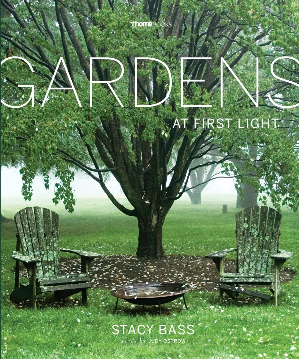 Gardens at First Light by Stacy Bass