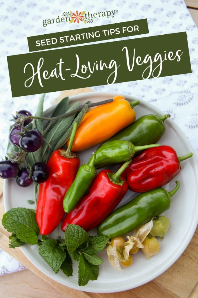 Seed Starting Tips for Heat loving Vegetables