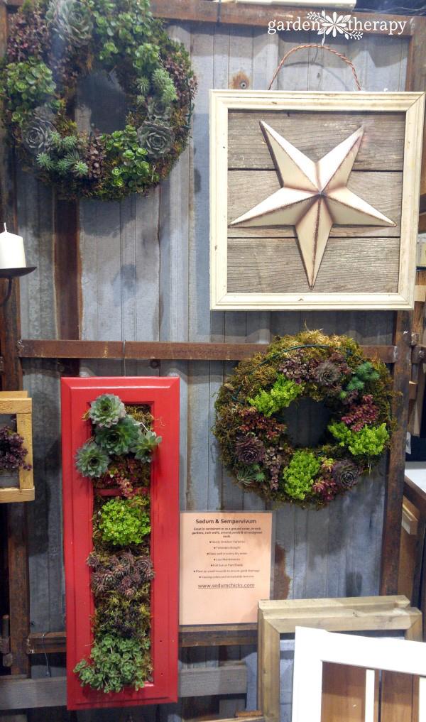 vertical succulent planters