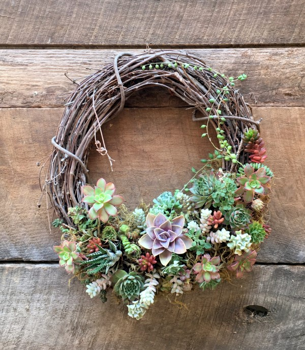 Plant a living wreath
