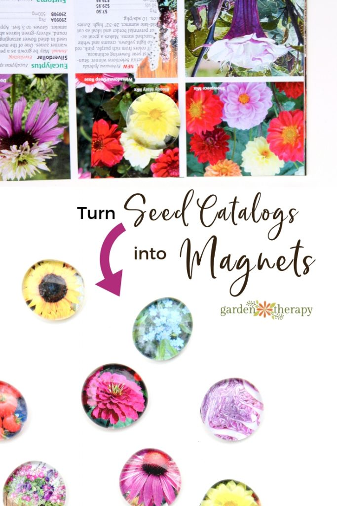 Turn Seed catalogs into Fridge Magnets