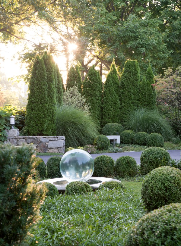 Garden photography tips: get the lighting right. Photograph by Stacy Bass.