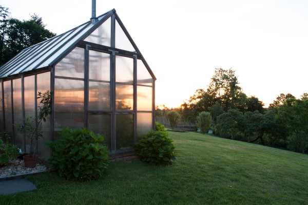 Greenhouse at sunrise, photographed by Stacy Bass