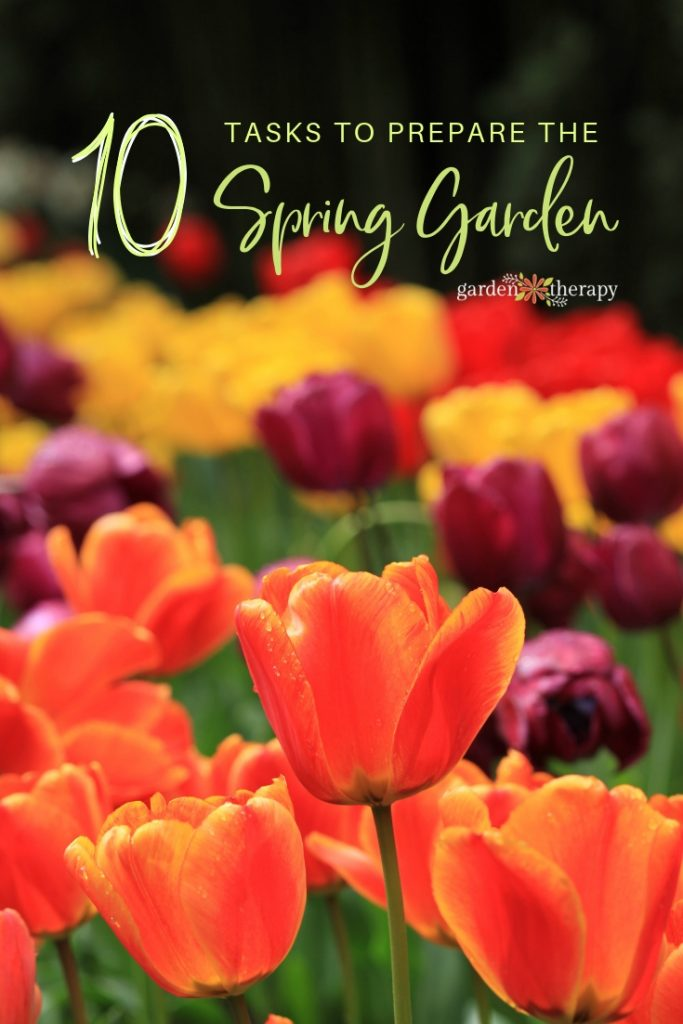 10 Tasks to Prepare the Spring Garden