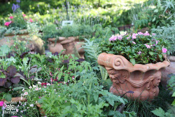 Create beautiful container gardens in pots with these tips for success