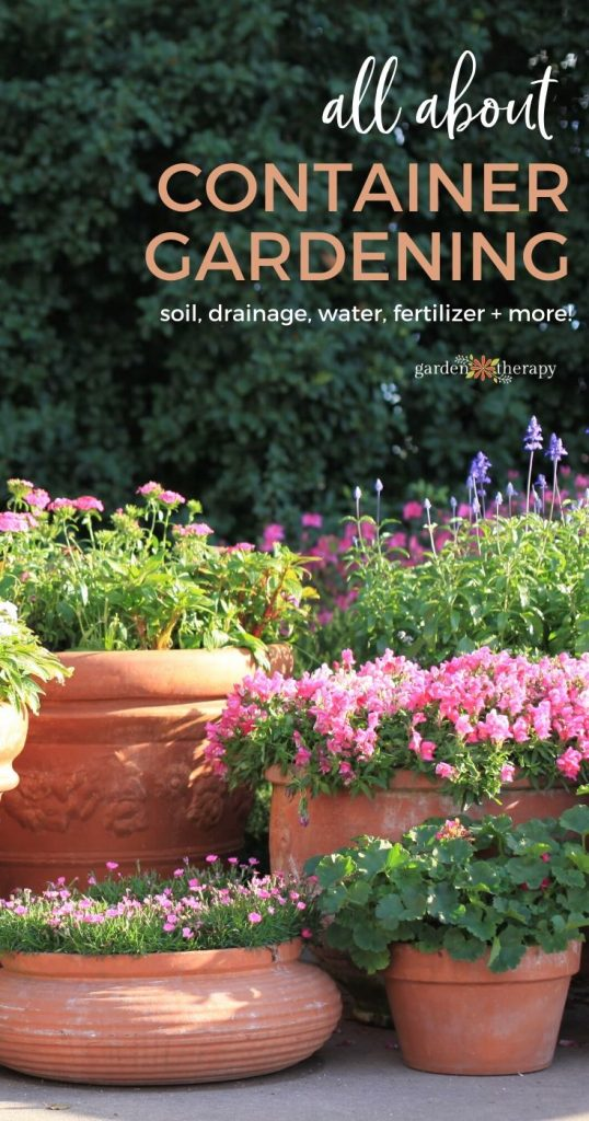 Successful Container Gardening Made Easy