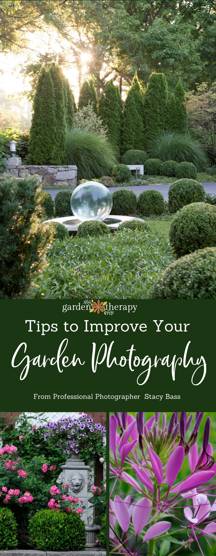 With a few simple tips, you can transform your garden photography from ordinary to extraordinary. #gardentherapy #photography #nature