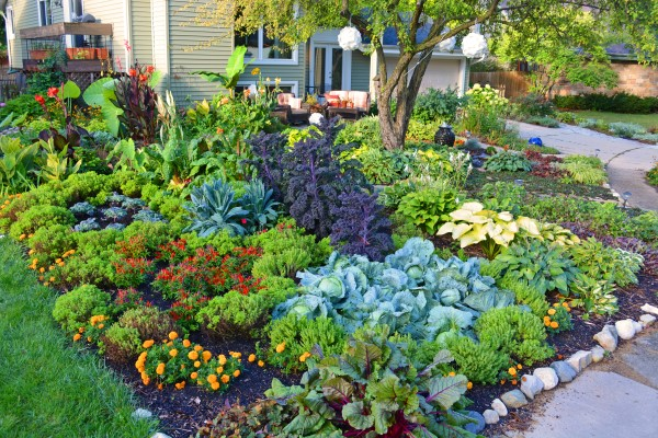 Front Lawn No-Till Vegetable Garden Design