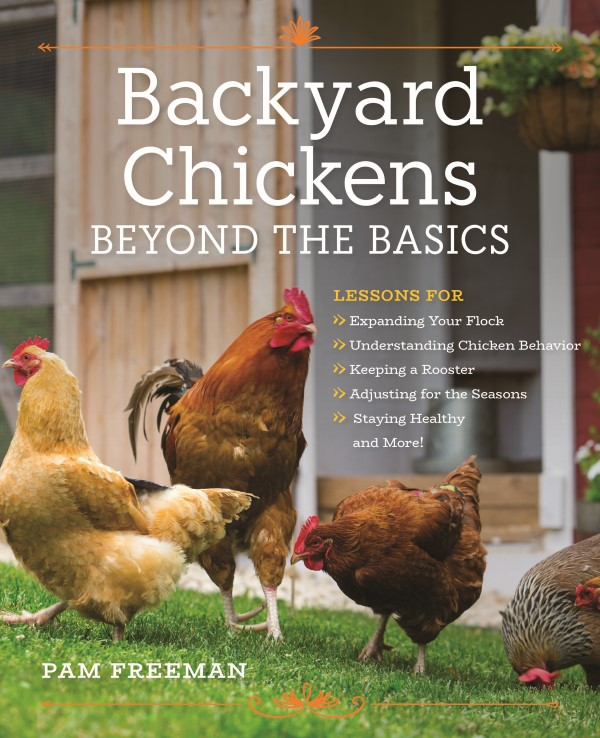 Backyard Chickens: Beyond the Basics by Pam Freeman