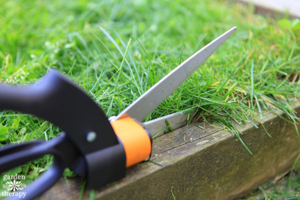 Lawn Care Unplugged - How to Use Grass Shears