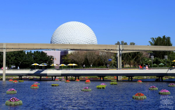 Floating planters at Epcot