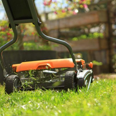 Lawn Care Unplugged: How to Use a Reel Mower