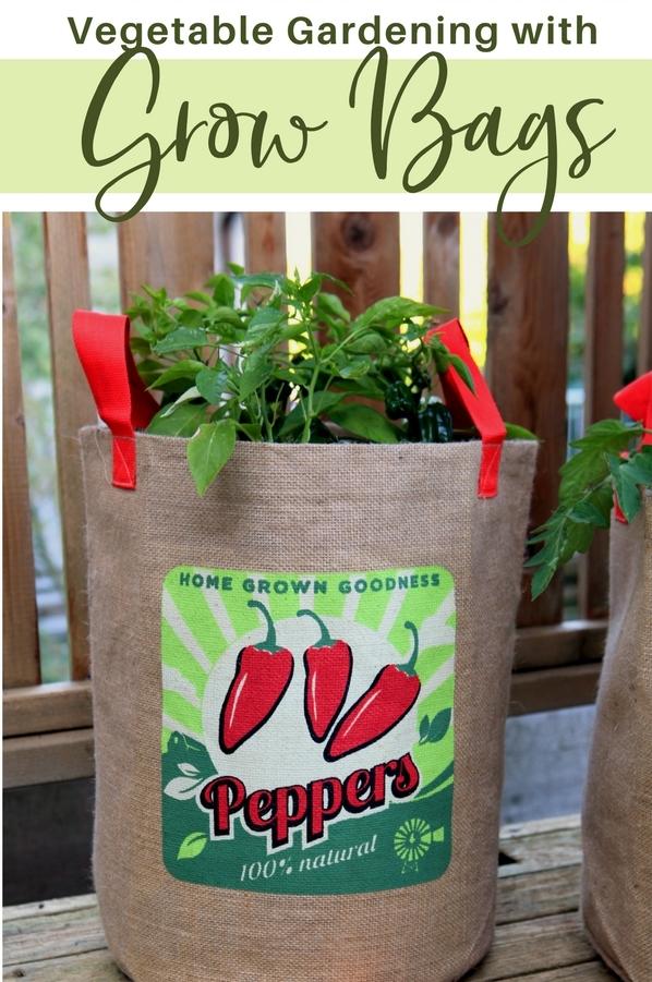 Vegetable-Gardening-in-Grow-Bags