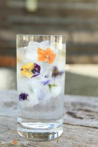 glass of flower ice cubes