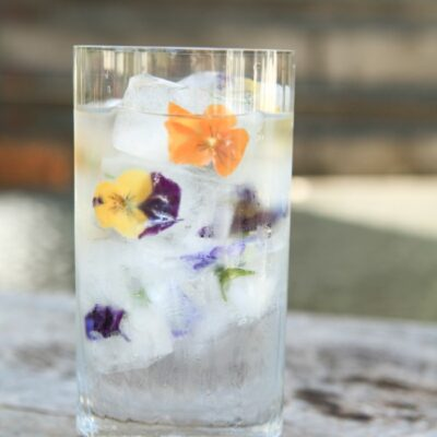 How to Make the Perfect Edible Flower Ice Cubes + How to Use Them