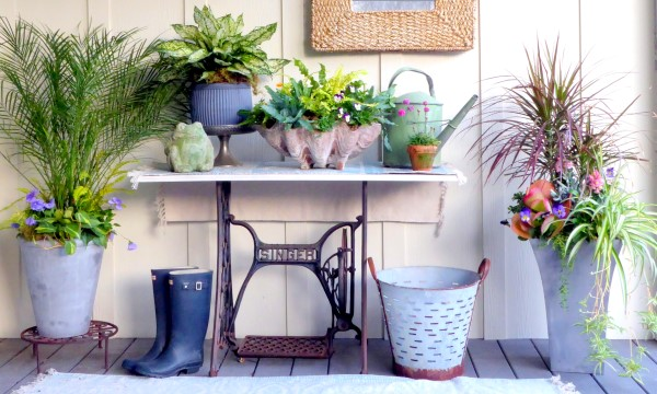 Porch Planters: Houseplants and Annuals
