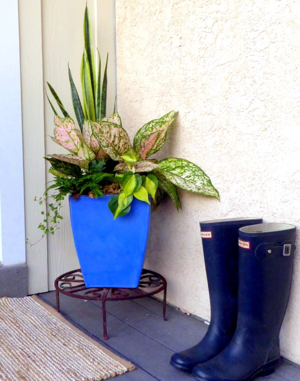 Move Houseplants Outdoors to Create Stunning Porch Planters