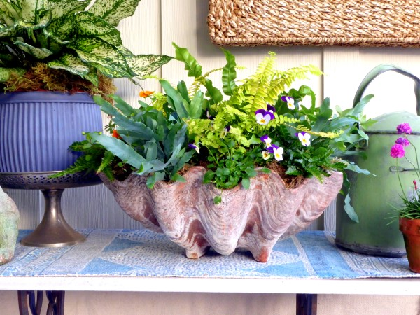 Houseplants Outdoors: Ferns