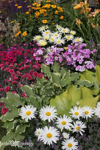 Intensive Planting Boosts Yield and Saves Water