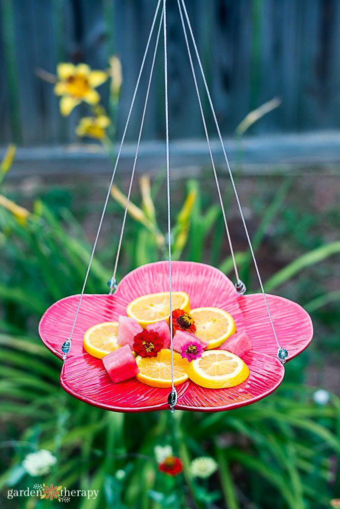 Butterfly feeder hanging in a garden