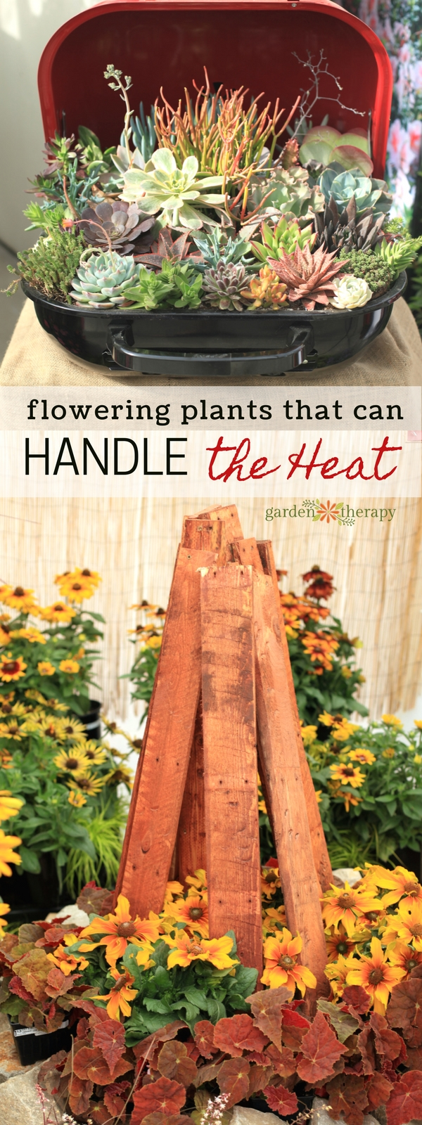 Flowers that can Handle the Heat