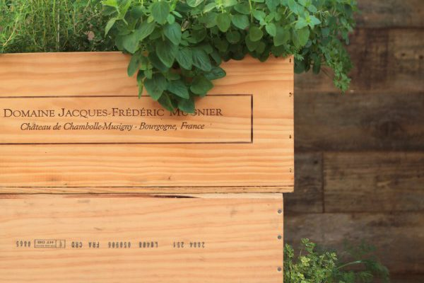 How to Make a Wood Wine Box Herb Garden