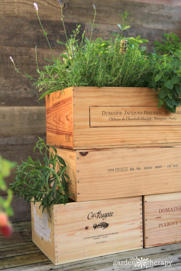 How to Make a Wood Wine Crate Garden