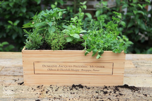 How to Make a Wood Wine Crate Herb Garden
