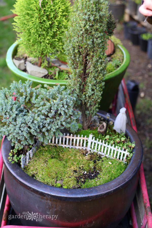 Haunted Halloween Miniature Garden