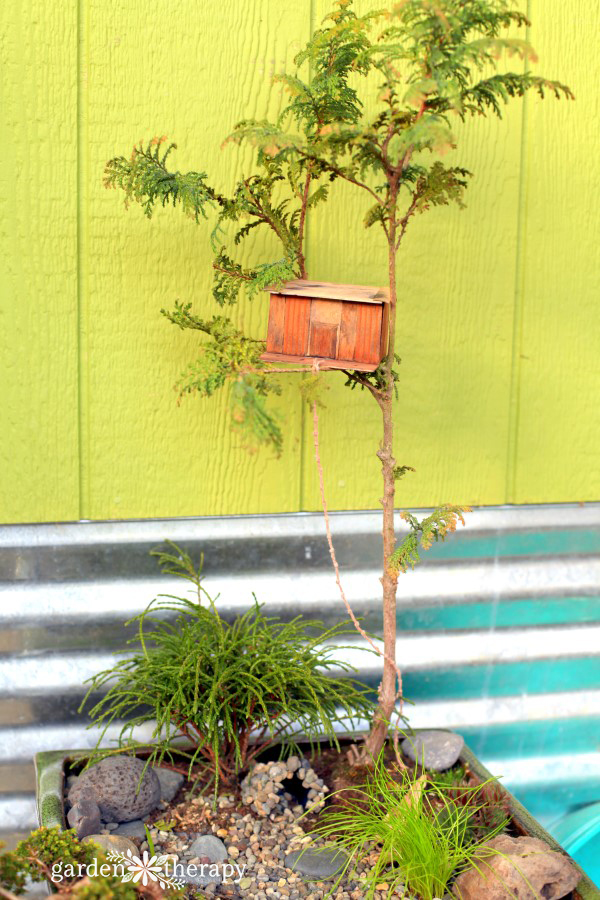 Magical Miniature Gardens (Treehouse Project)