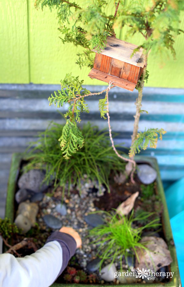 Magical Miniature Gardens (Treehouse)