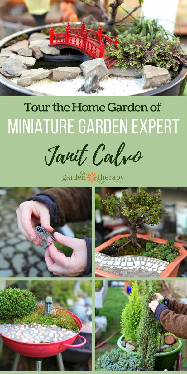 Miniature Garden Tour