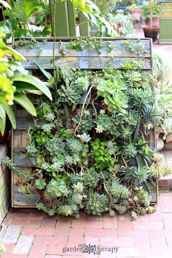 Pallet Planter Ideas that Stylishly Bring Upcycling to