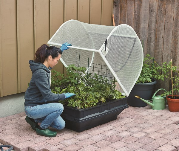 Vegepod Container Garden