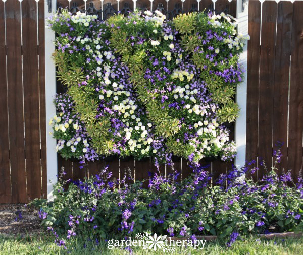 Vertical Planting System with purple and white annuals
