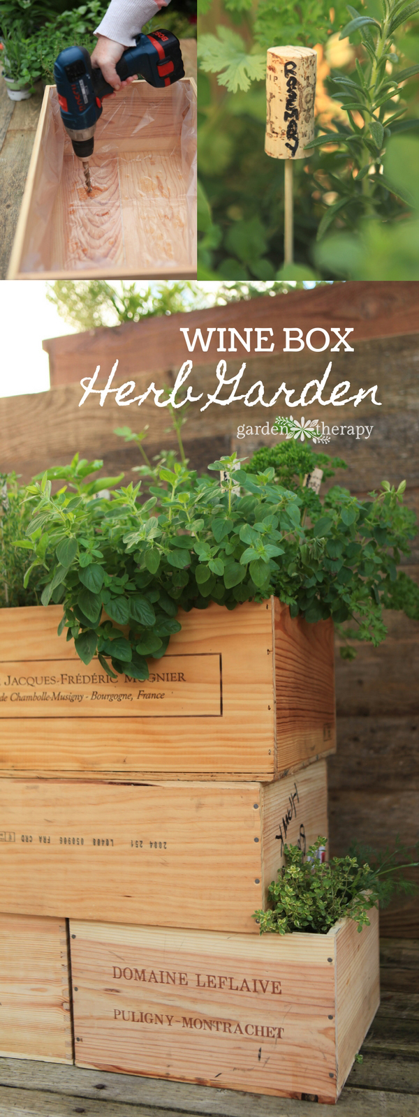 Make a DIY Wine Box Herb Garden