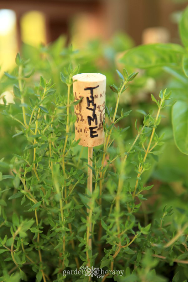 Wine Cork Plant Labels