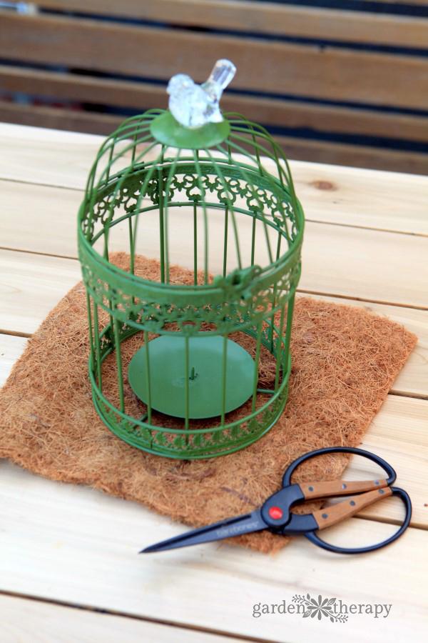 Make a birdcage hanging basket planter