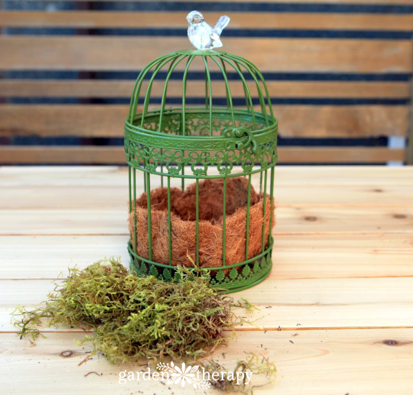 Birdcage hanging basket made from a candle lantern