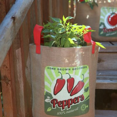 Portable Gardening: Growing Tomatoes, Peppers, and Herbs in Burlap Grow Bags