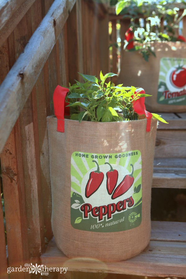 Burlap Pepper Planter Bag