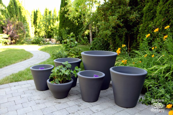 Crescent Garden patio pots for a patio fruit garden