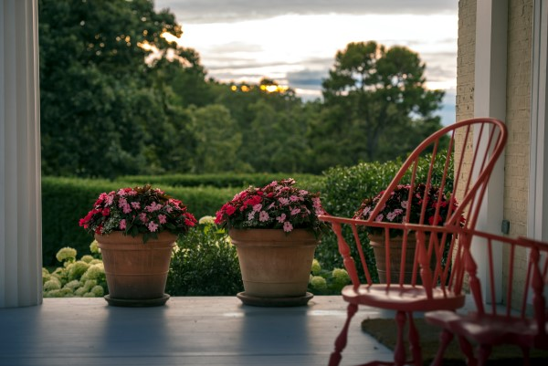 Moss Mountain Farm Porch SunPatiens