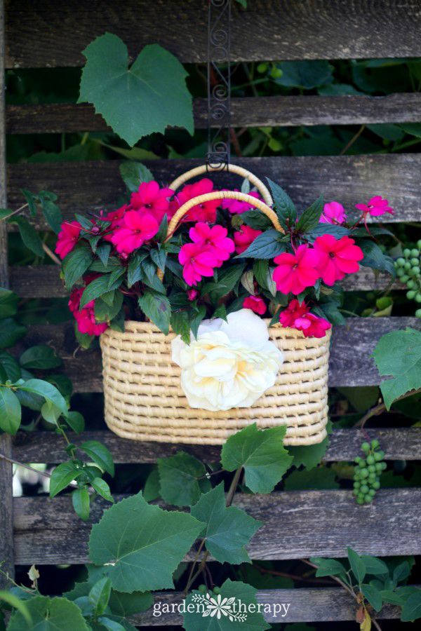 Sunpatiens Thrifted Purse Planter
