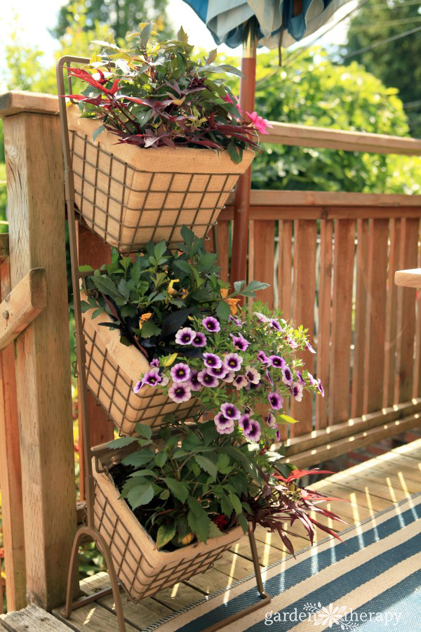 Three Tier Hanging Baskets