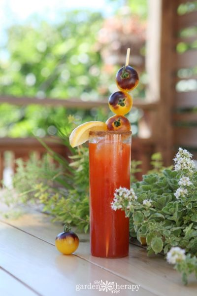 Indigo Fireball Bloody Mary