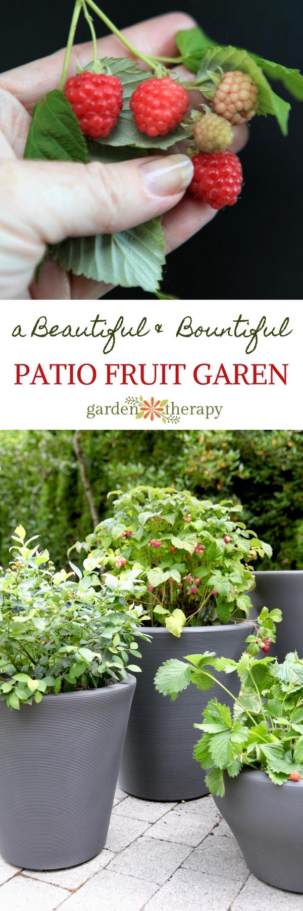 Patio Fruit -Sweet Edibles You Can Grow as a Container Garden
