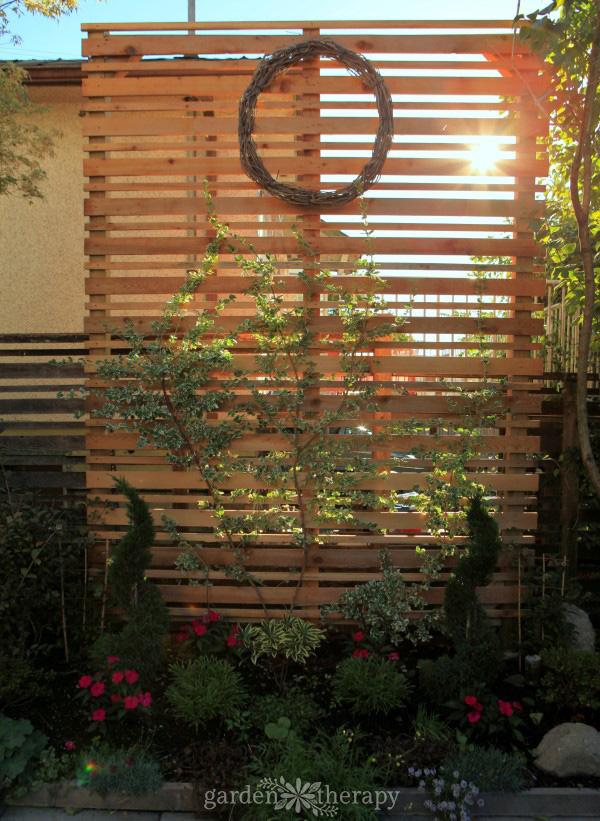 a diy espalier privacy screen for the backyard garden therapy� Backyard Privacy Screens a diy espalier privacy screen for the backyard