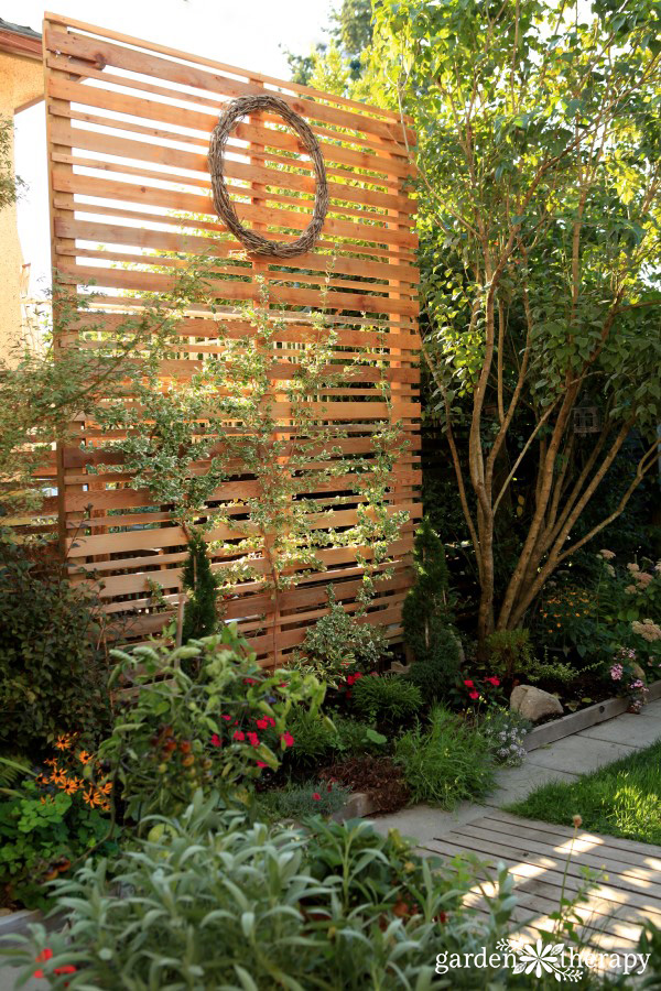Privacy screen trellis
