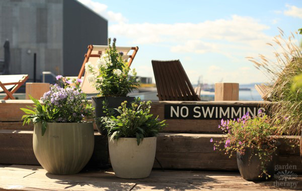 1 Hotel Brooklyn Bridge Pool Deck